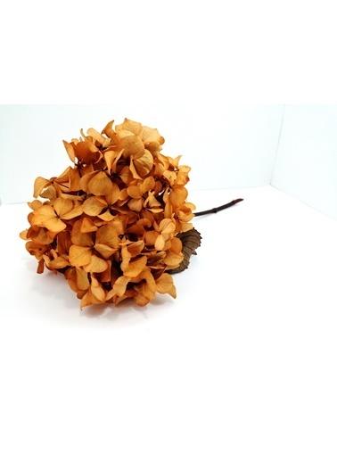 Kuru Çiçek Deposu Turuncu Solmayan Tek Dal Ortanca Oranj